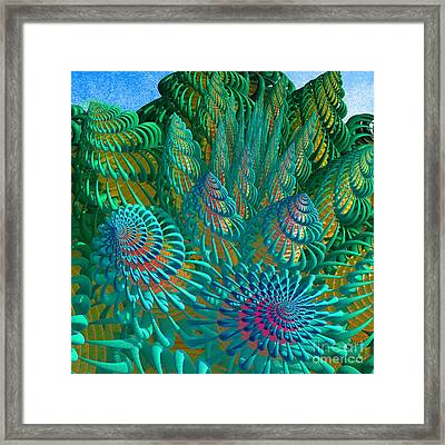 3d Seashells Artwork Framed Print by Gaspar Avila