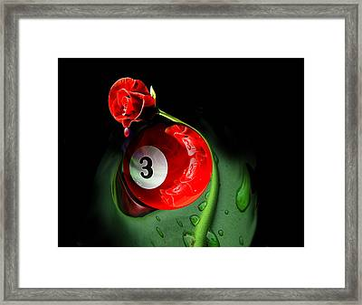 3rd Rose Framed Print by Draw Shots