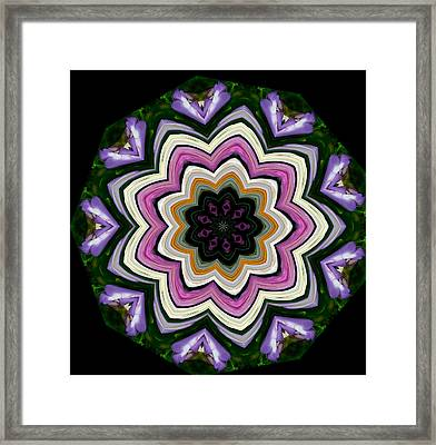 Framed Print featuring the photograph 9 Petaled Design by Baha'i Writings As Art