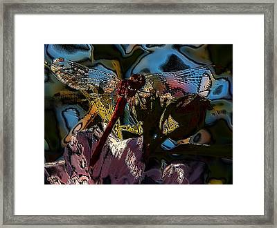 Abstract Dragonfly Framed Print by Belinda Cox