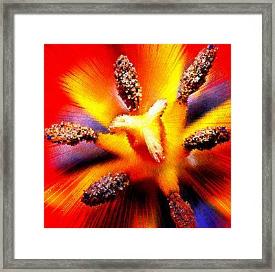 Abstract Flower Macro Framed Print by Bruce Nutting