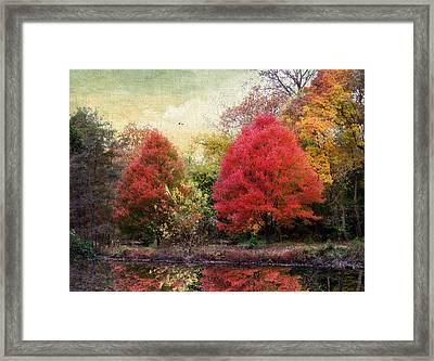 Autumn Reflected Framed Print