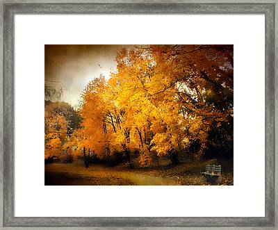 Autumn Respite Framed Print by Jessica Jenney