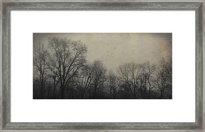 Bare Branch Horizon Framed Print by JAMART Photography