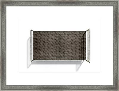 Bed Of Nails Isolated Framed Print by Allan Swart