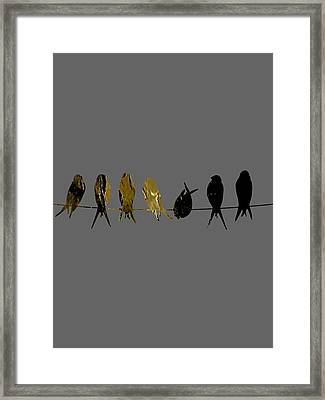 Birds On A Wire Collection Framed Print