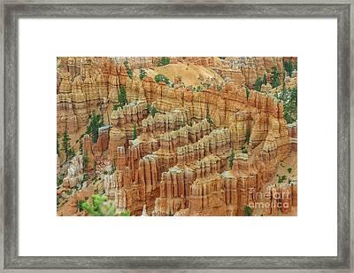 Bryce National Park, Utah Framed Print by Patricia Hofmeester