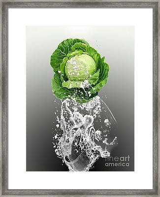 Cabbage Splash Framed Print