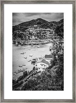 Catalina Island Avalon Bay Black And White Photo Framed Print