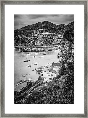 Catalina Island Avalon Bay Black And White Photo Framed Print by Paul Velgos