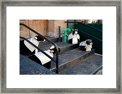 Framed Print featuring the photograph 4 Cows On A Stoop by JoAnn Lense