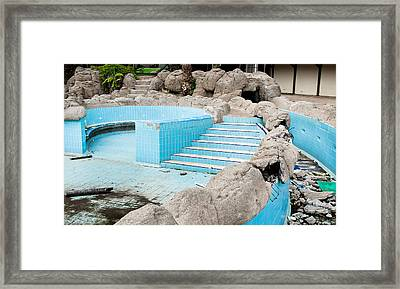 Derelict Swimming Pool Framed Print