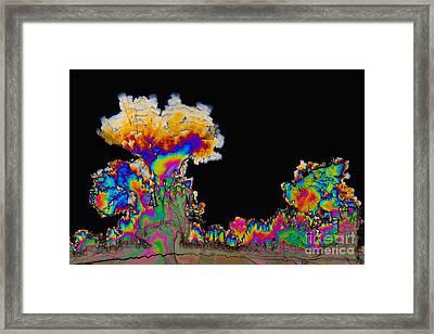 Dopamine Hydrochloride, Polarized Lm Framed Print