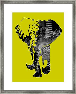 Elephant Collection Framed Print
