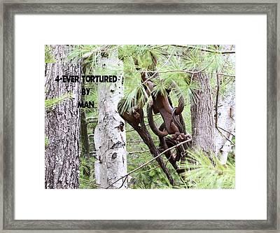 4-ever Tortured By Man Framed Print