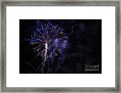 Fireworks Framed Print by Diane Falk