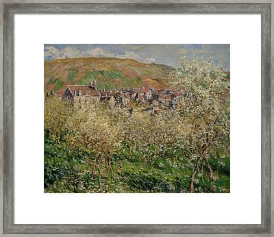 Flowering Plum Trees Framed Print