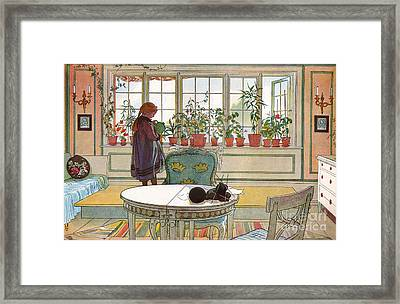Flowers On The Windowsill Framed Print by Carl Larsson