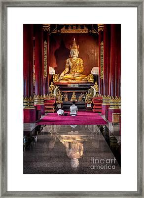 Golden Buddha Framed Print by Adrian Evans