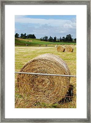 Hay Bales Framed Print by Les Cunliffe