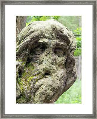 Hermit Juan Garin Framed Print by Michal Boubin