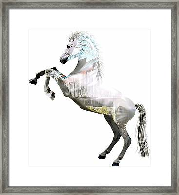 Horse Collection Framed Print by Marvin Blaine