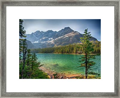 Lake O'hara - Yoho National Park Framed Print by Yefim Bam