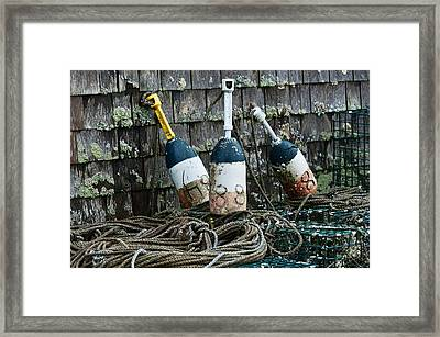 Lobster Buoys Framed Print