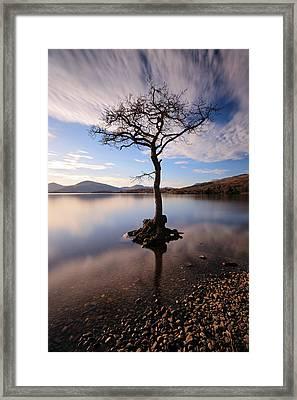 Loch Lomond Tree Framed Print by Grant Glendinning