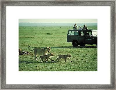 Lunch With The Kids Framed Print by Carl Purcell