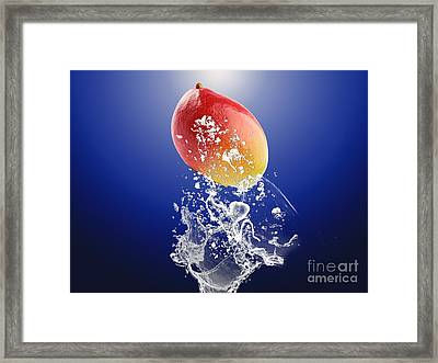 Mango Splash Framed Print by Marvin Blaine