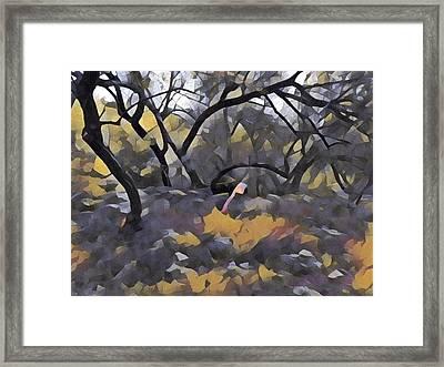 Morning Walk Trees Framed Print