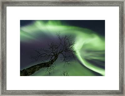 Northern Lights In The Arctic Framed Print by Arild Heitmann