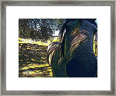 Nosey Belle Framed Print