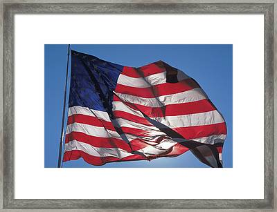 Old Glory Framed Print by Carl Purcell