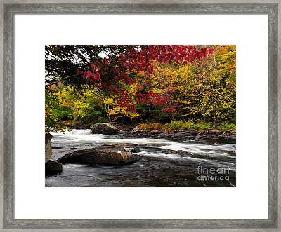 Ontario Autumn Scenery Framed Print