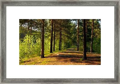 P B Landscape Framed Print