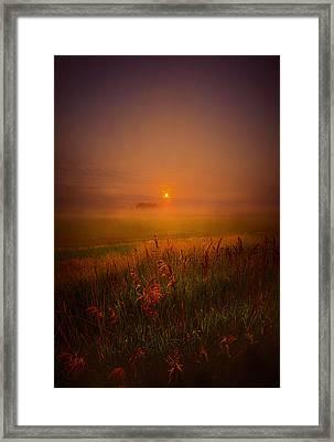 Peace Of Mind Framed Print by Phil Koch