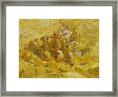 Quinces, Lemons, Pears And Grapes Framed Print