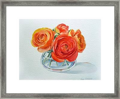 Ranunculus Framed Print
