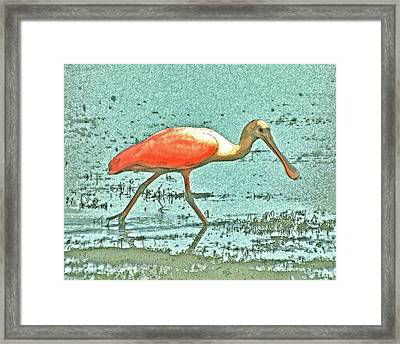 Framed Print featuring the digital art 4- Roseate Spoonbill by Joseph Keane