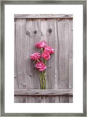 Roses Framed Print by Svetlana Sewell