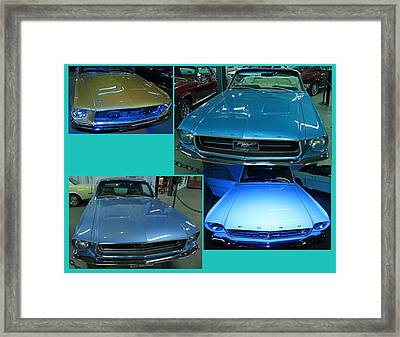 4 Stang Is Best Framed Print by Mark Yacovetta