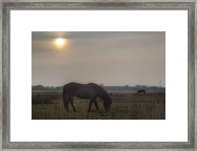 Stanpit Marsh - England Framed Print