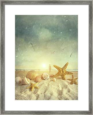 Starfish And Seashells  At The Beach Framed Print