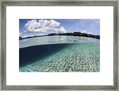 Sunlight Dances Across A Sandy Slope Framed Print