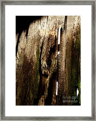 Texture Series Framed Print by Amanda Barcon