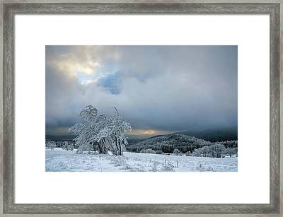 Typical Snowy Landscape In Ore Mountains, Czech Republic. Framed Print