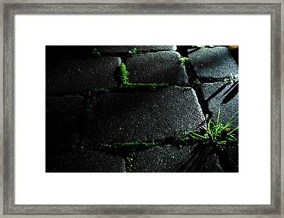 Unnamed Framed Print by Brian Foxx