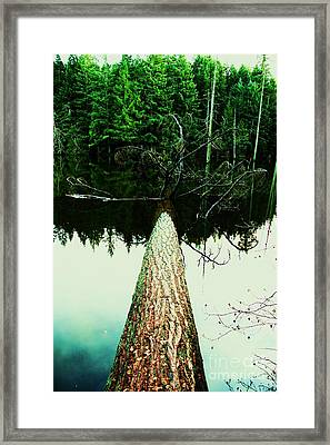 404 Framed Print by Dean Edwards